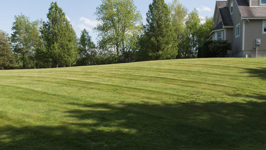 Rayez votre style de pelouse subtile