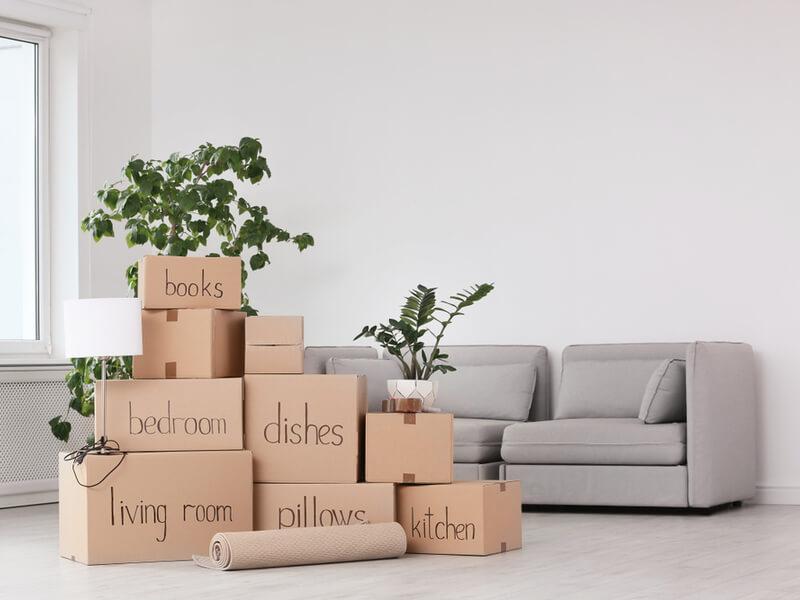 Salon rempli de boîtes de déménagement.
