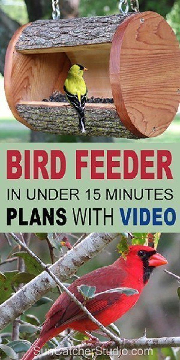 Projets de bricolage en été: 15 mangeoires d'oiseaux maison faciles