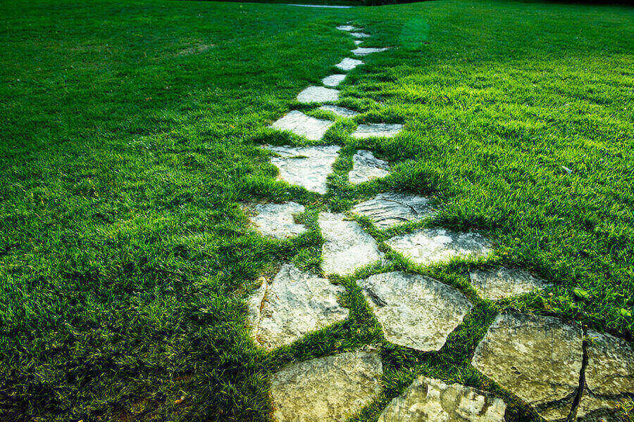 Tremplin Sentiers Grass Style