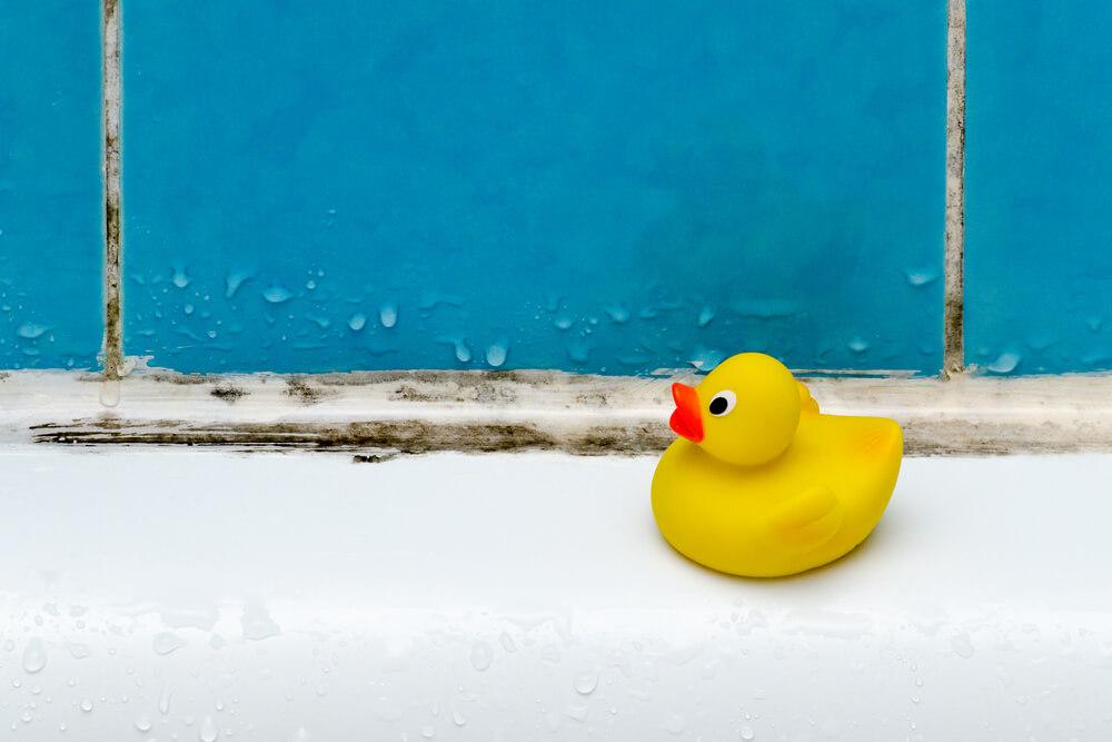 Humidité dans les taches de moisissure dans la salle de bain