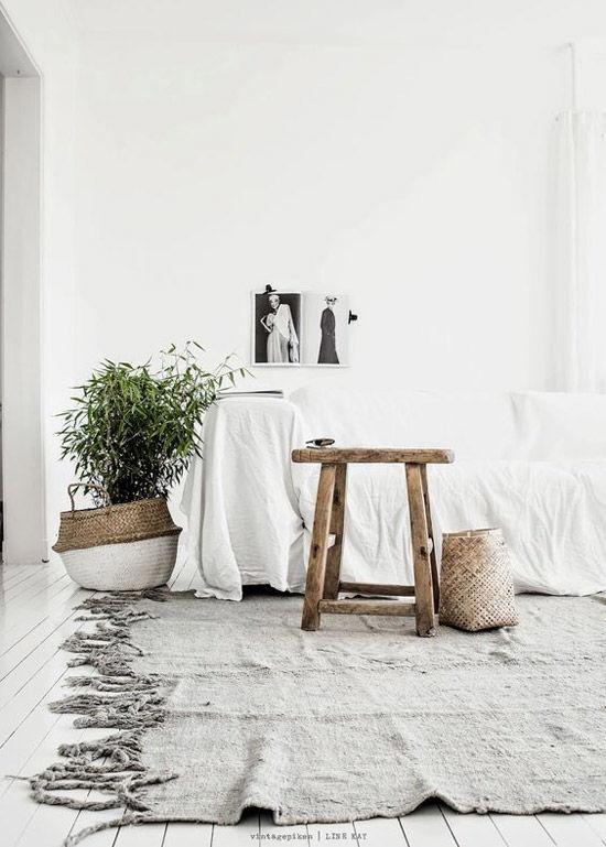 Plantes dans les maisons scandinaves