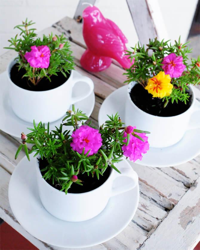 Ensemble de jardin en mousse de rose Tasse à thé Timeless