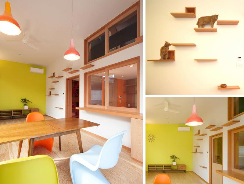 La maison du chat