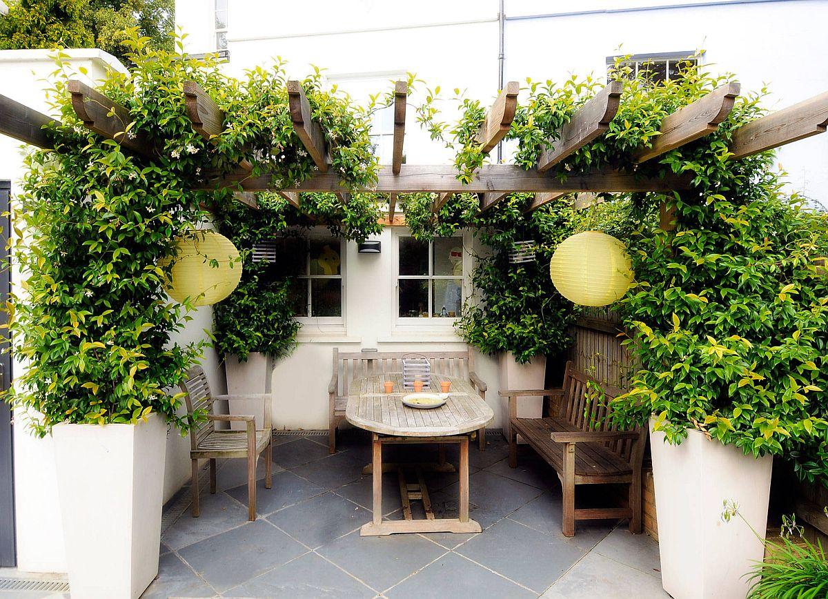 Verdure associée à une petite structure de pergola élégante dans le petit jardin méditerranéen