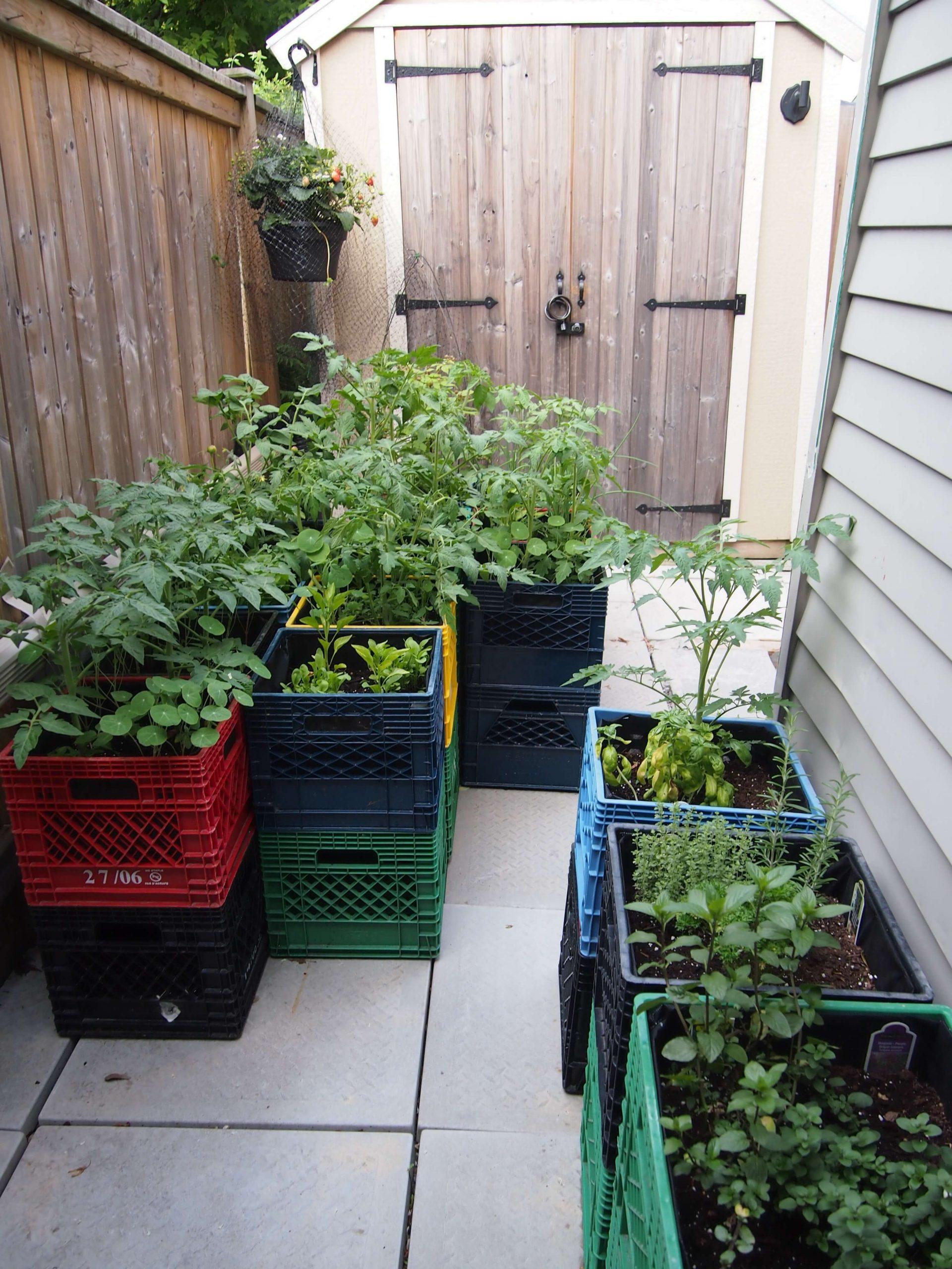 Jardin surélevé peu encombrant à petit budget