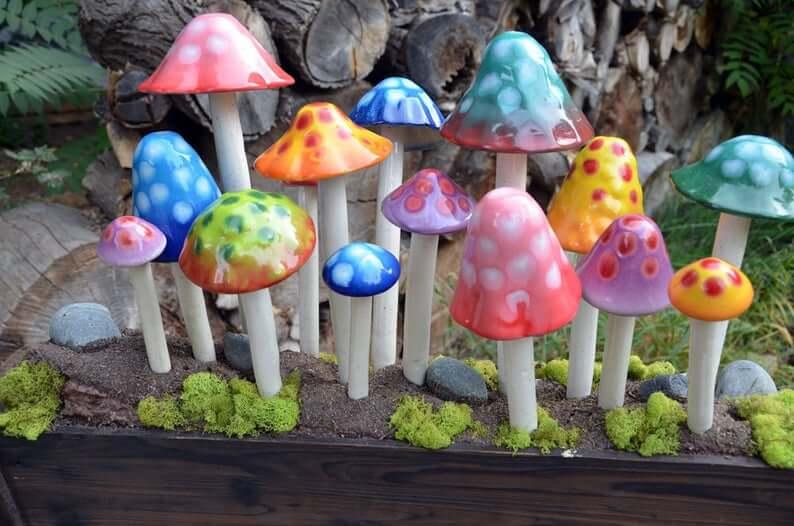 Bouquets de champignons de jardin lumineux et brillants