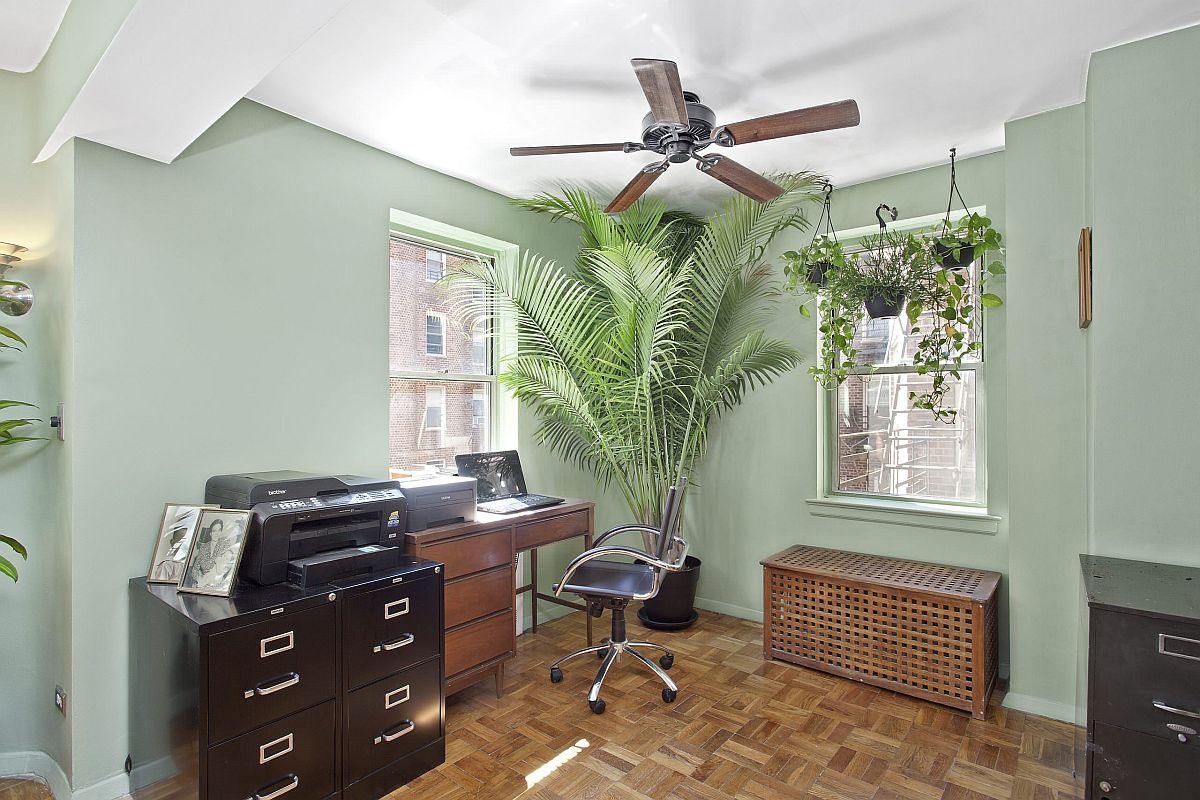 Les plantes d'intérieur apportent une touche de glamour tropical à ce bureau à domicile traditionnel de Manhattan