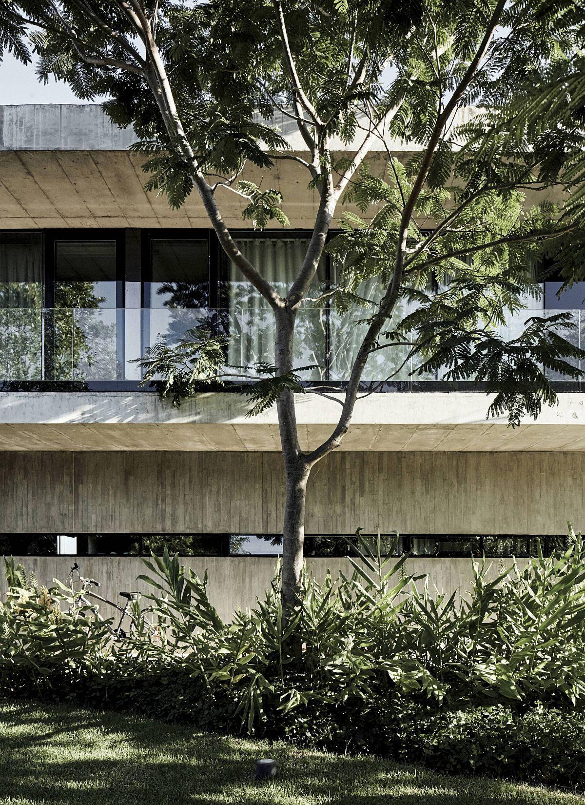 La verdure naturelle autour de la maison crée des espaces extérieurs abrités