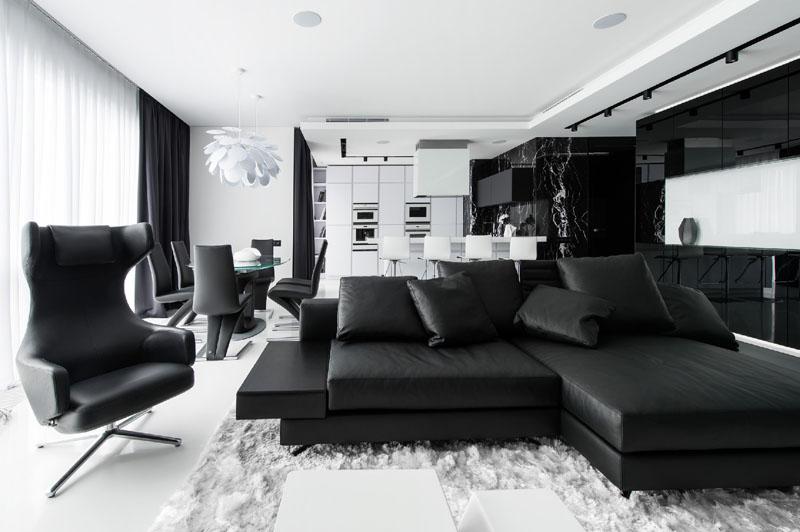 Salon de l'appartement noir et blanc