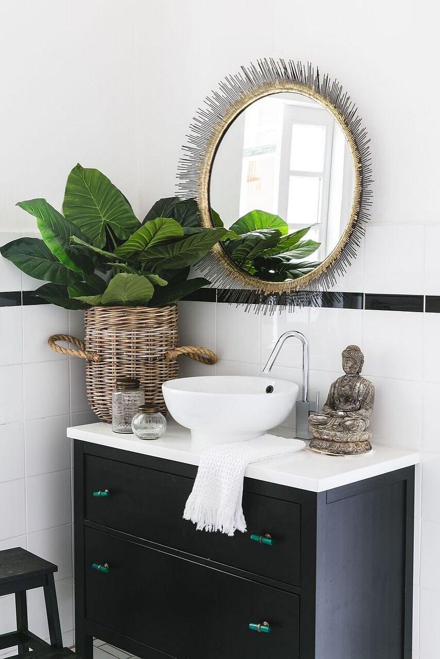 Trouvez un coin douillet pour cette belle plante d'intérieur