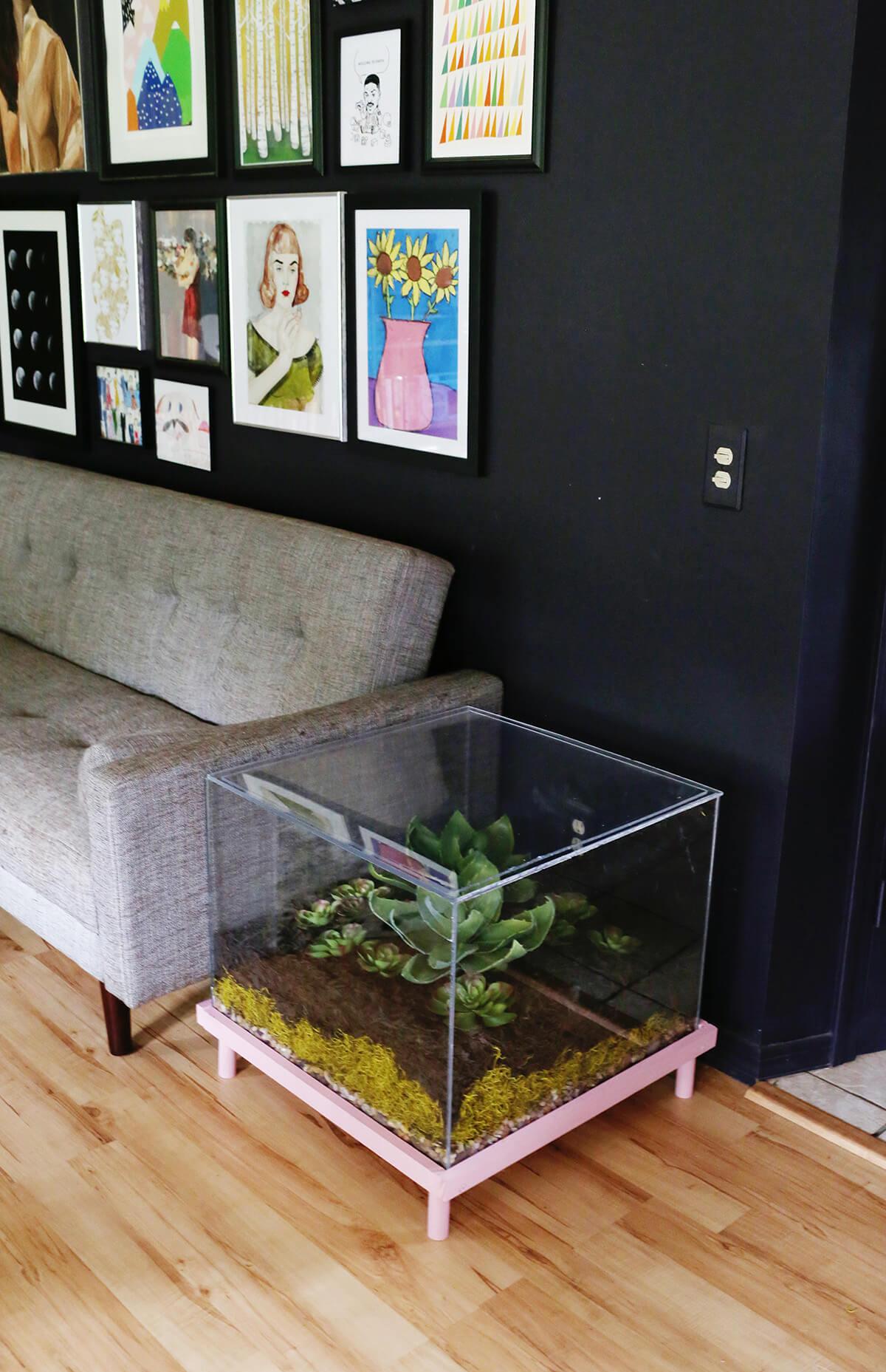 Table de terrarium en verre de rêve du botaniste