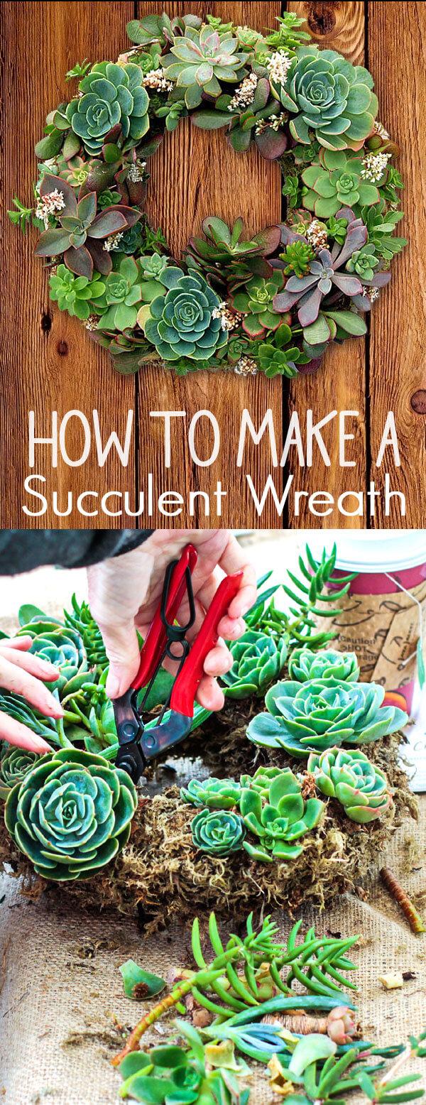 Idée de jardinière succulente bricolage pour couronnes