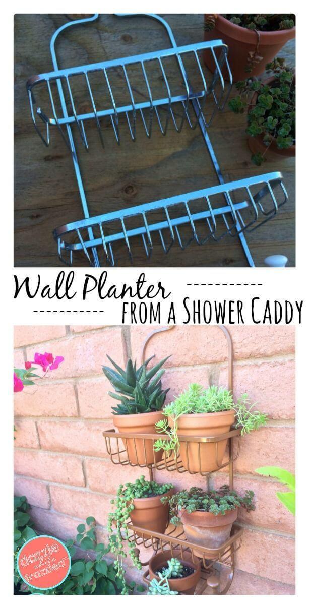 Caddy de douche recyclé facile avec des plantes