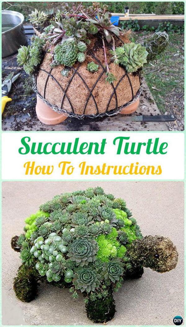 Créez un adorable planteur de tortues