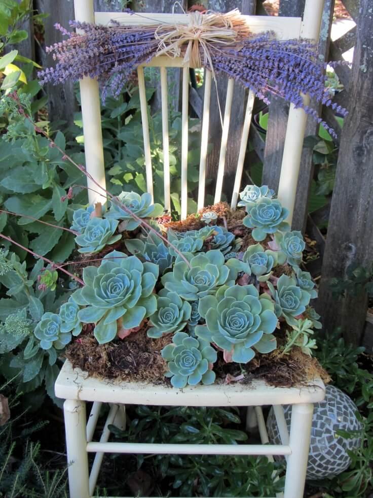 Jardinière Easy Chair avec plantes succulentes et lavande