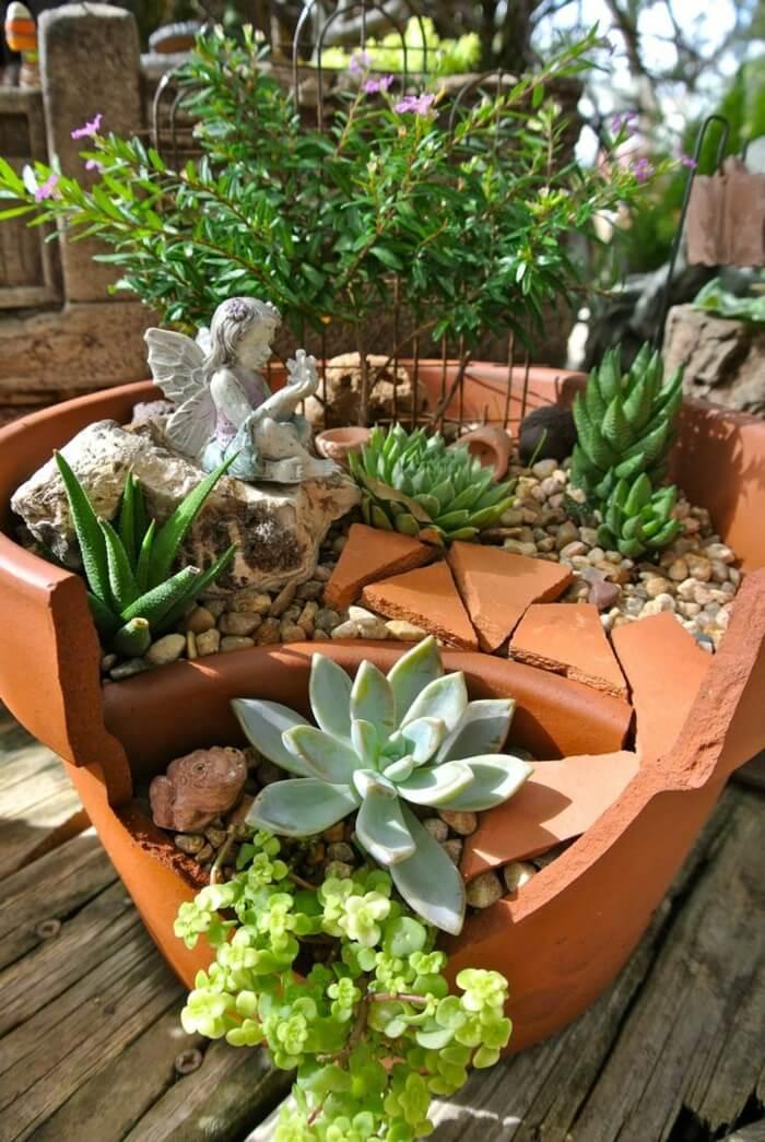 Jardin de fées avec de belles plantes succulentes
