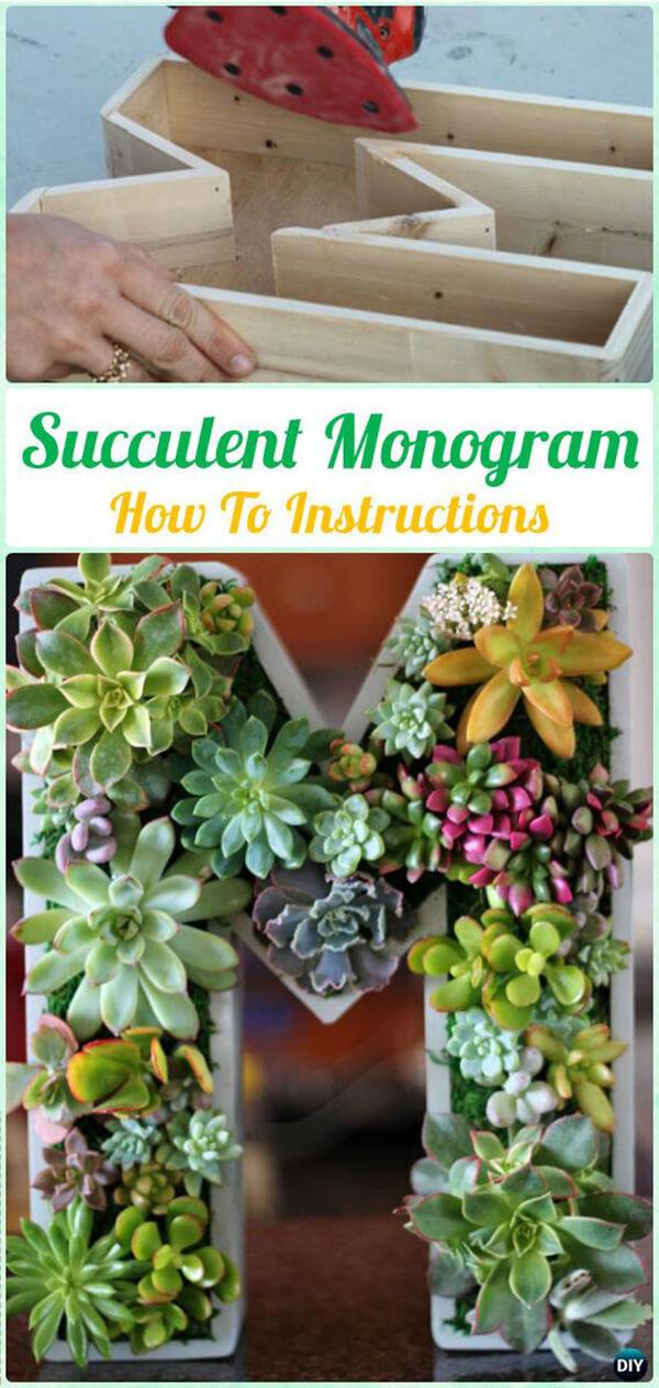 Cultivez des plantes succulentes dans une lettre initiale surdimensionnée