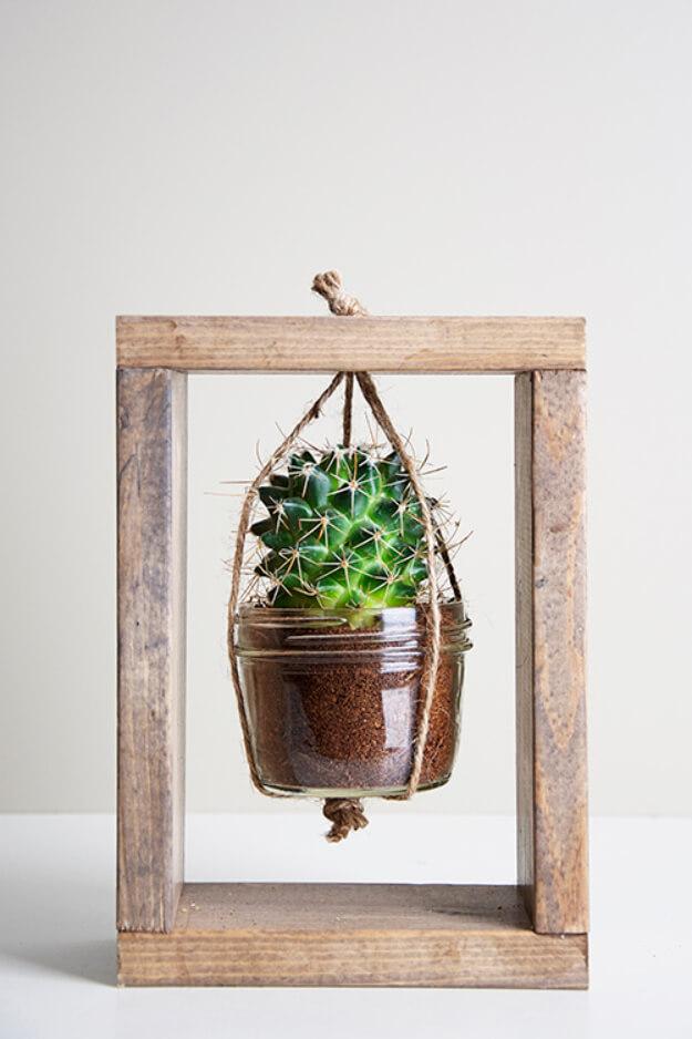 Cadre de boîte avec cactus suspendu