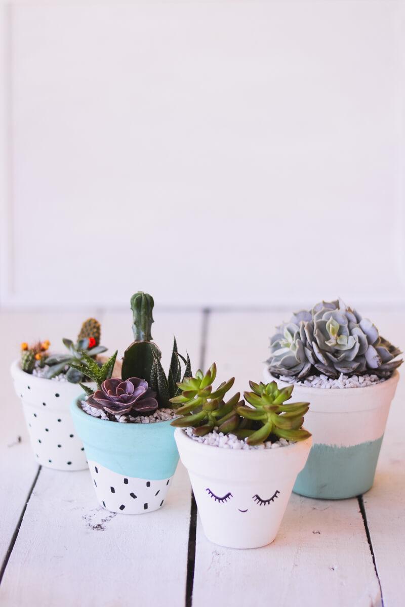 Pots en terre cuite peinte douce avec succulentes