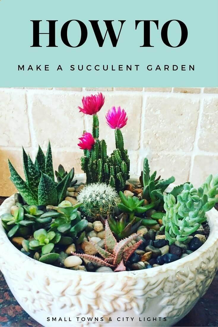 Délicieux jardin de bricolage avec des plantes variées