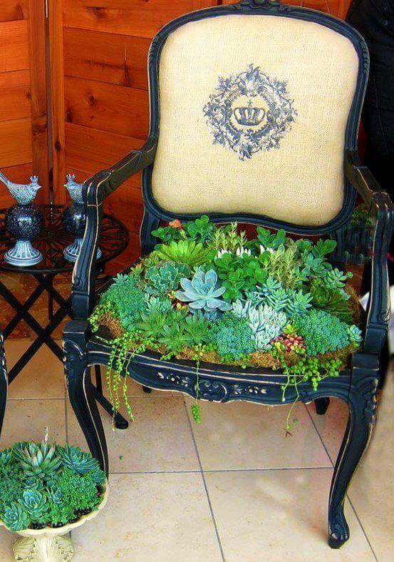 Remplacer un siège de chaise par des plantes succulentes