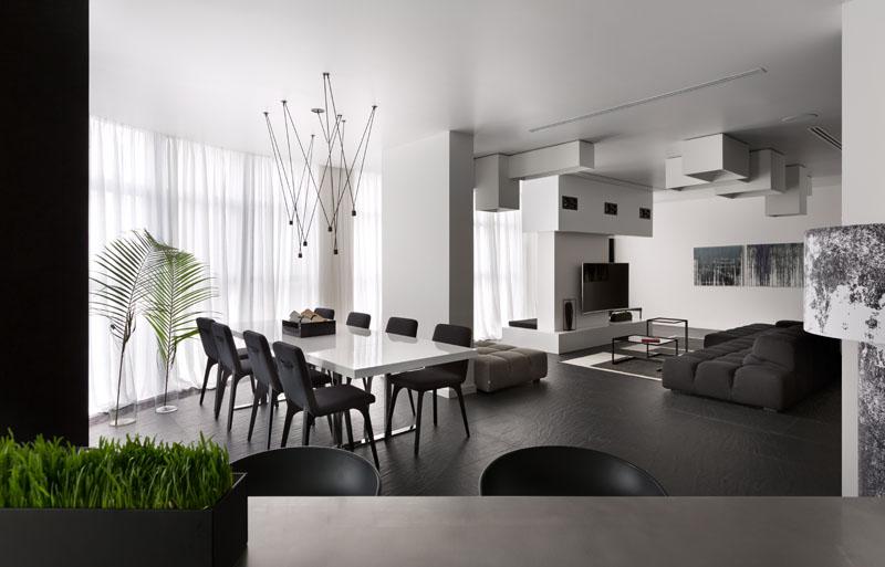 Plantes d'appartement noir et blanc