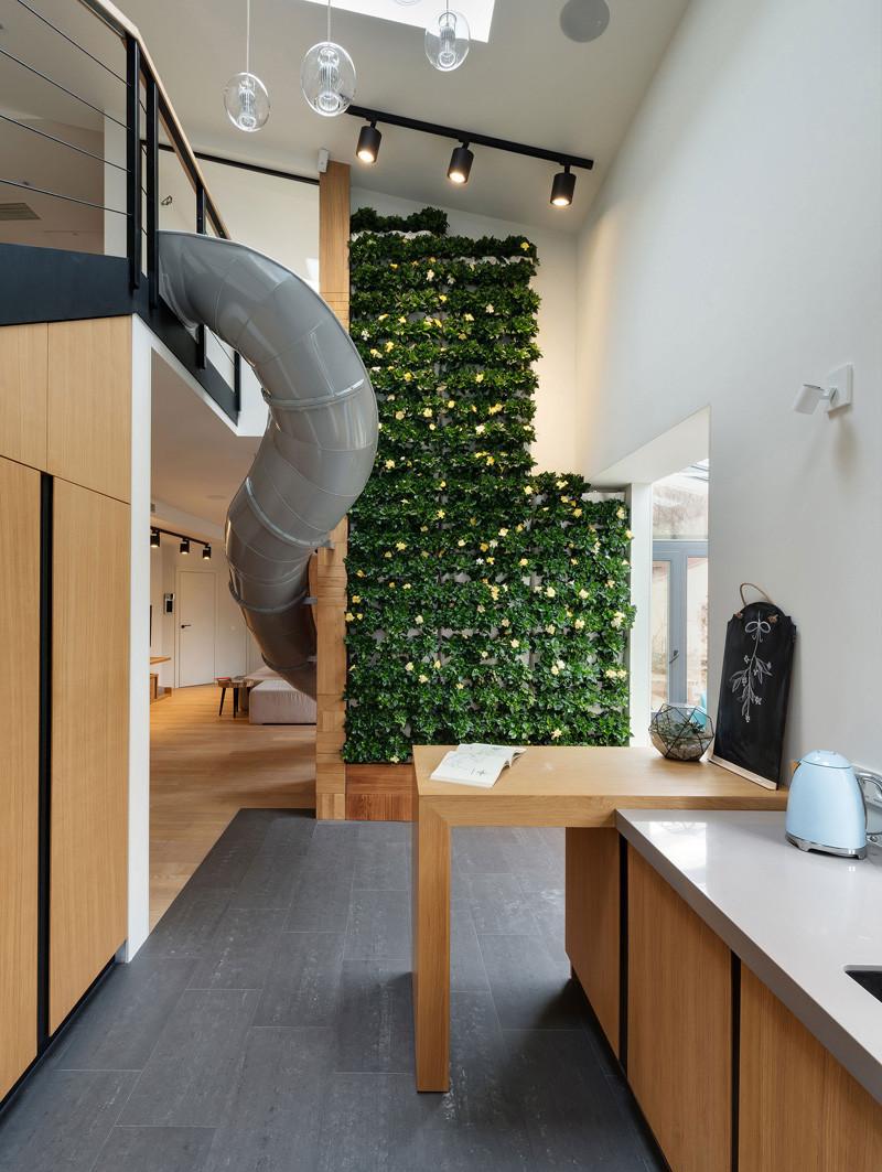 Appartement Slide living mur végétal