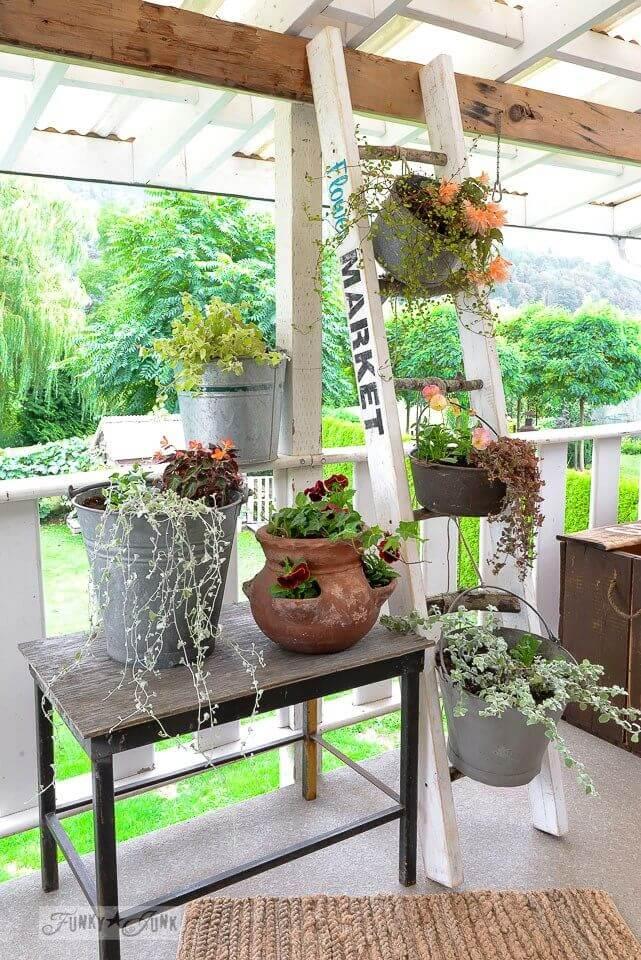 Mélange de porche de plantes en pot rustique