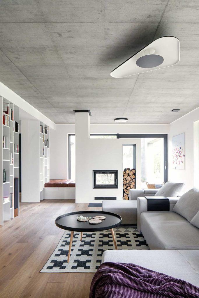 Le salon comprend un canapé gris multifonctionnel, une cheminée en verre avec du bois de chauffage et des étagères en bois intégrées
