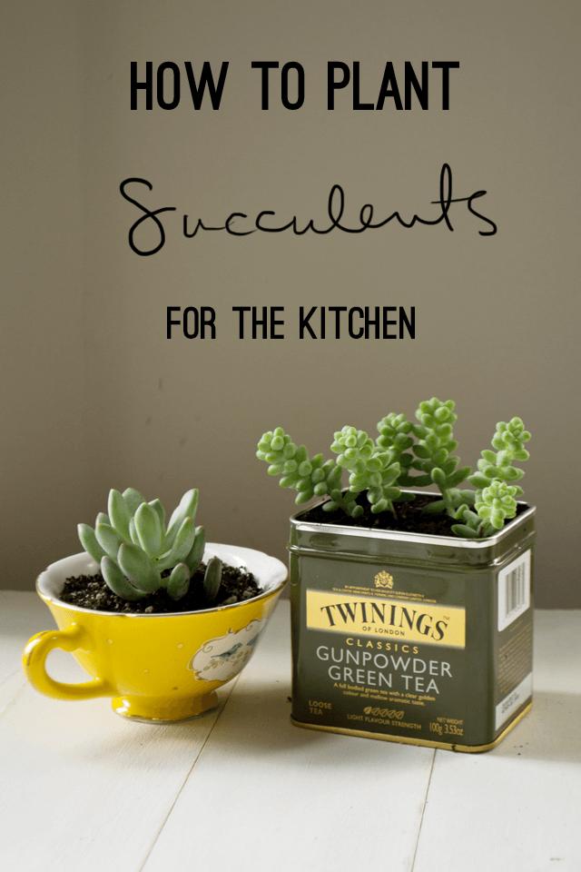 Ensemble de jardinières tasse à thé et étain