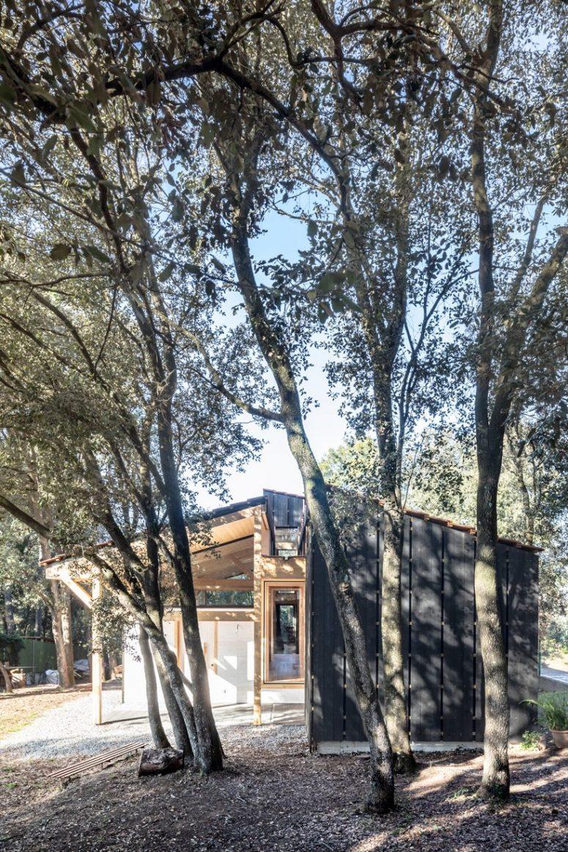 La maison est en pure harmonie avec les arbres autour et sa `` cohésion dans l'espace