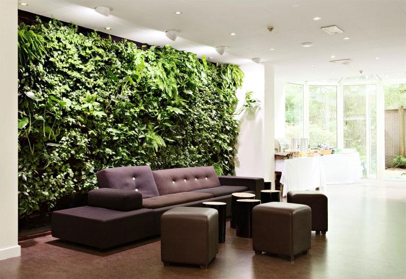 murs verts décorant les plantes d'intérieur