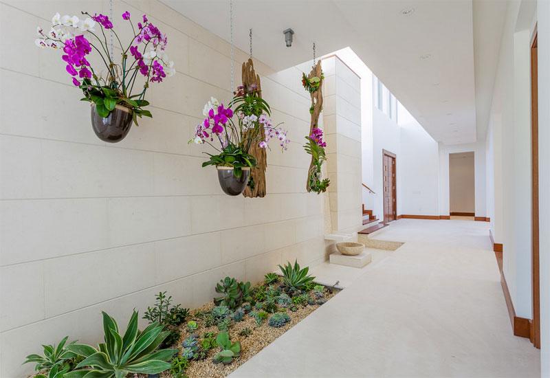chemin jardin décoration de plantes vertes
