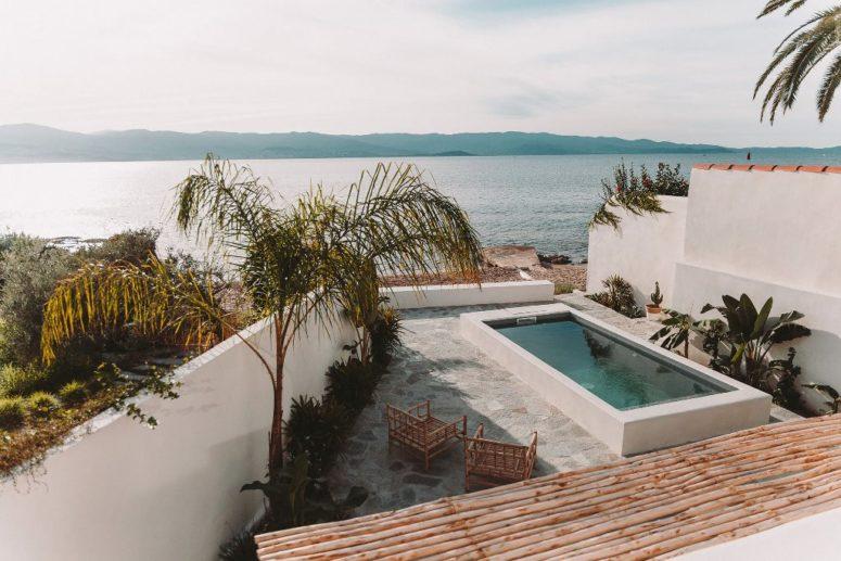 Ici vous pouvez voir une petite piscine entourée de plantes tropicales