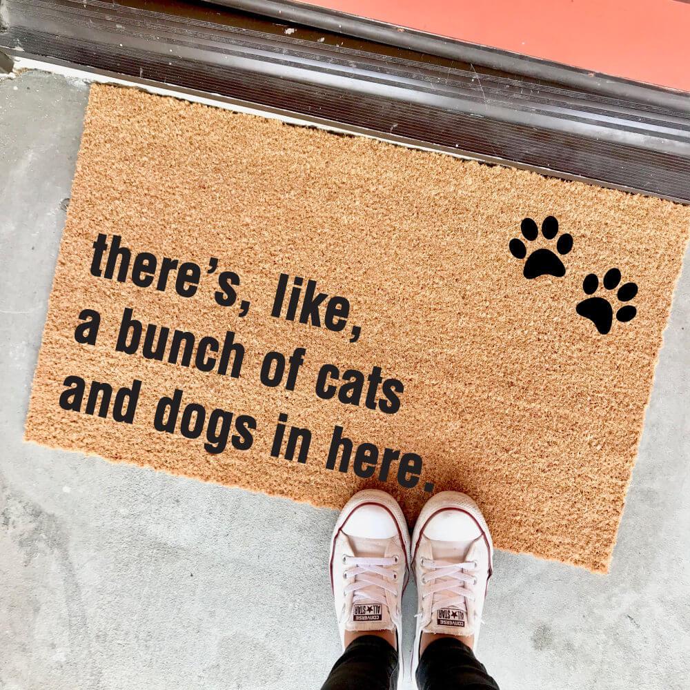 Les chiens et les chats accueillent vos invités