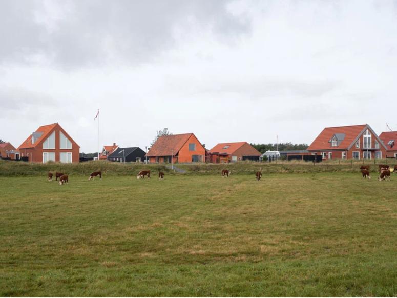 La maison réinterprète les maisons longues danoises traditionnelles et semble très naturelle dans le quartier
