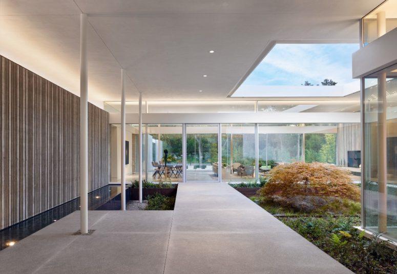 Ceci est un patio intérieur avec des plantes particulières et une lucarne ainsi que de la lumière le long des murs