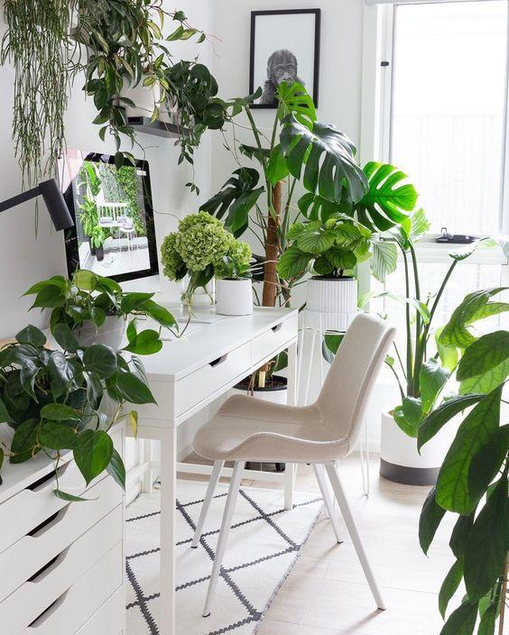 un bureau à domicile neutre et aéré avec des meubles IKEA, des œuvres d'art simples et des plantes tropicales en pot partout