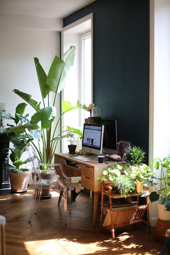 un bureau à domicile tropical moderne du milieu du siècle avec un bureau en bois vintage, une chaise fantôme, beaucoup de plantes tropicales partout