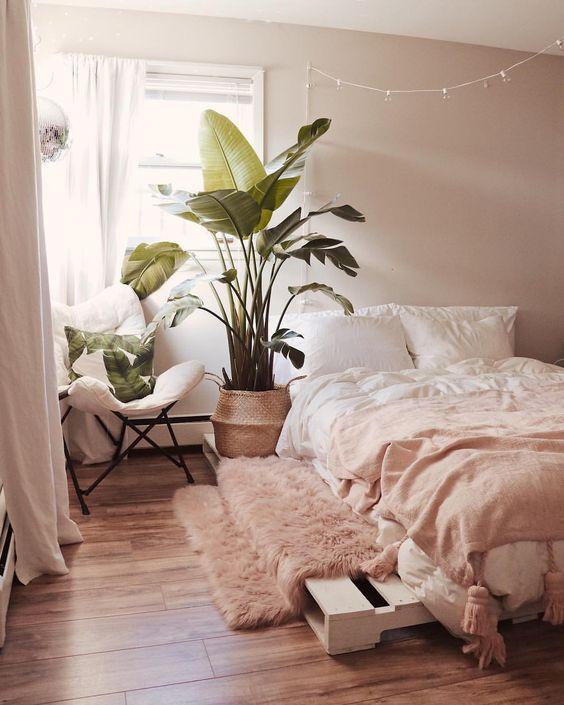 une chambre contemporaine accueillante avec des murs blush, une literie blush et blanche, un tapis rose, une plante en pot et des oreillers tropicaux