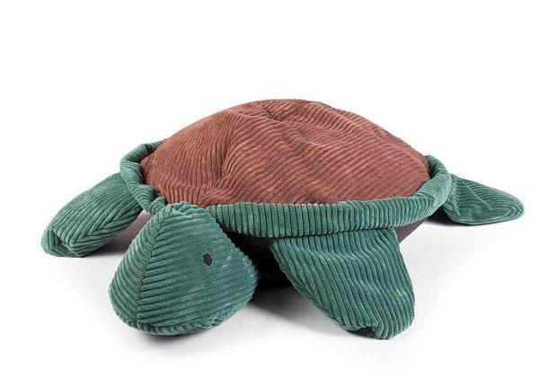 conception de tortue
