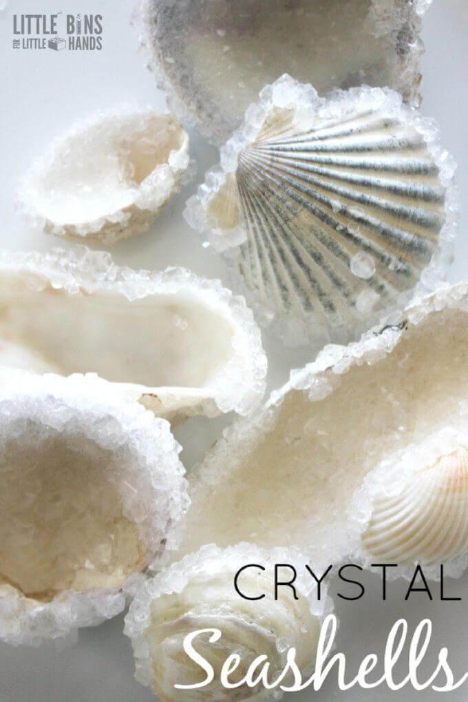 Coquillages incrustés de cristaux