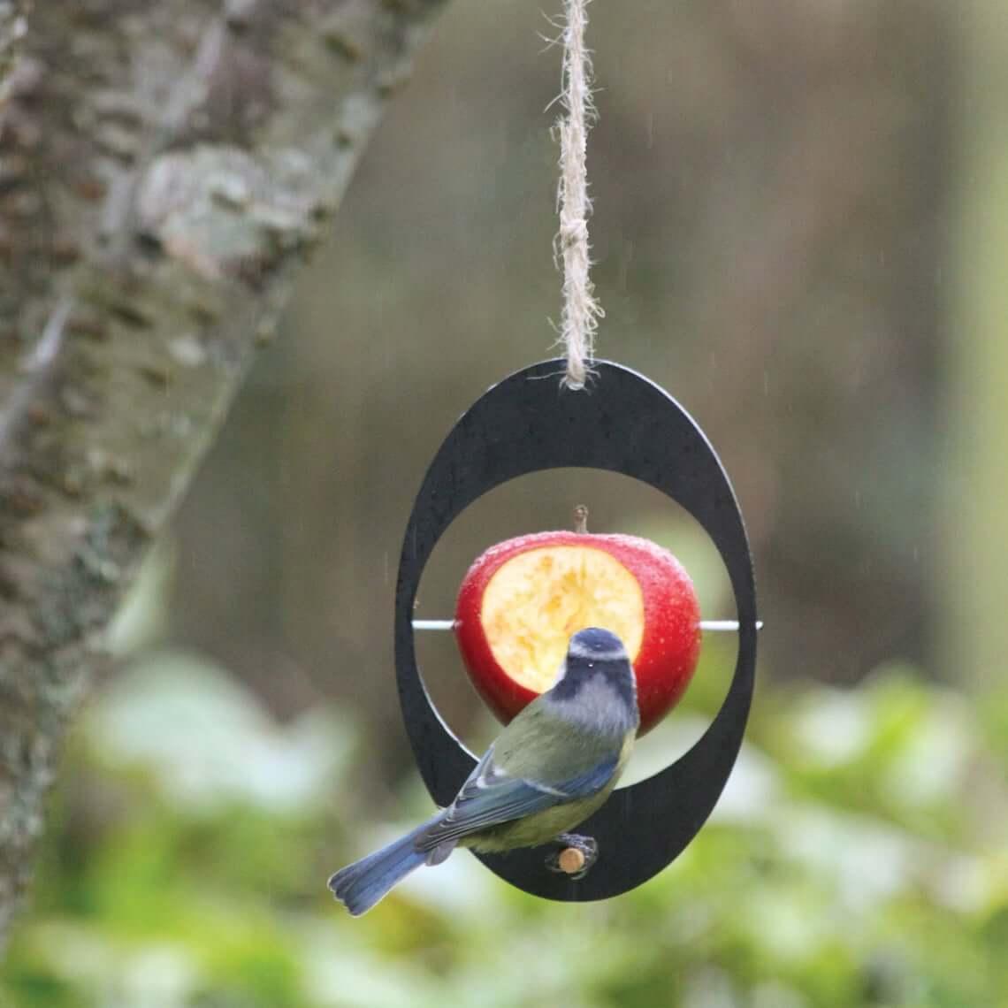 Mangeoire à oiseaux écologique pour fruits