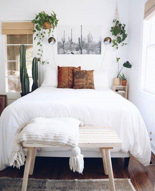 une petite chambre aérée avec des cactus en pot et de la verdure dans des pots fixés au mur pour une sensation de fraîcheur