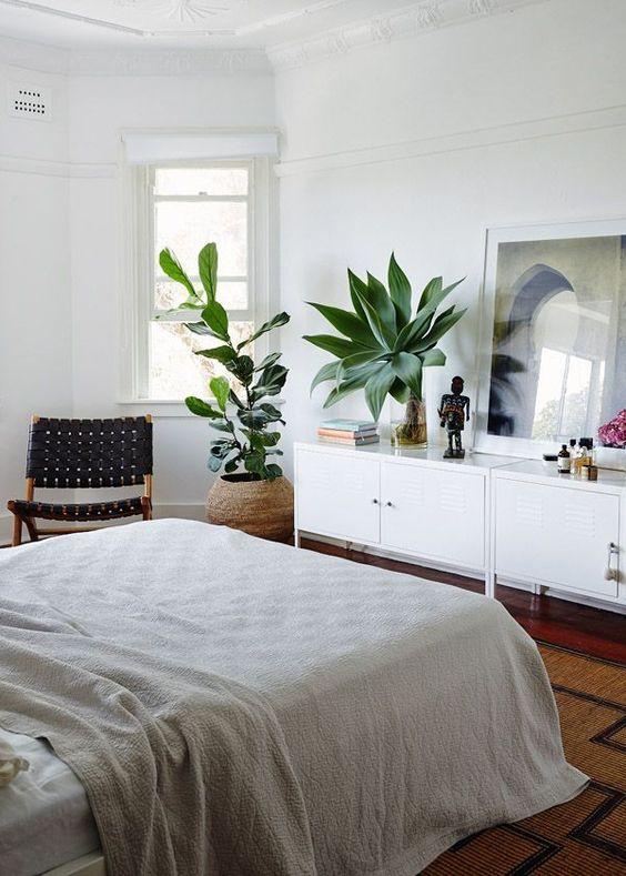 une chambre bohème avec deux plantes remarquables qui attirent l'attention et rafraîchissent l'espace