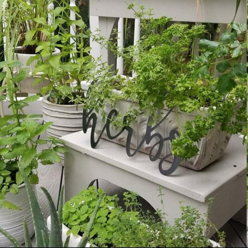 Décoration de jardin d'herbes de script en métal