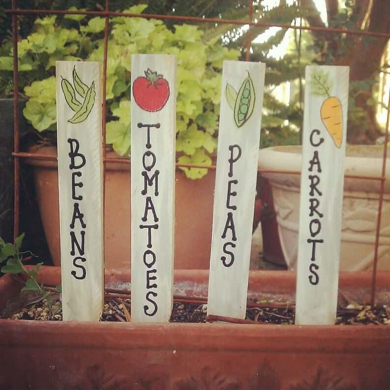 Charmants marqueurs de légumes peints à la main avec des images