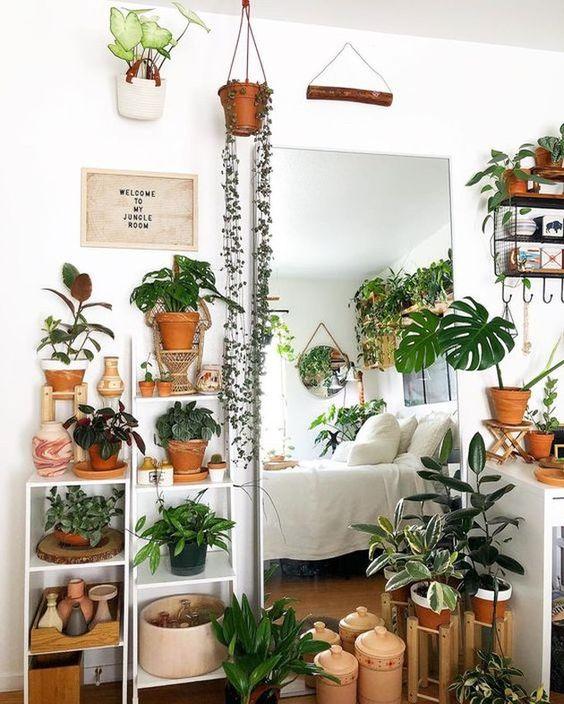 une chambre à thème végétal avec de la verdure en pot partout - sur les étagères, suspendue et même sur les murs est wow