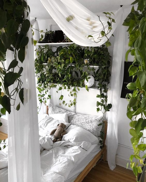 un vrai jardin de chambre avec beaucoup de verdure suspendue vous donnera l'impression d'être à l'extérieur à la fois